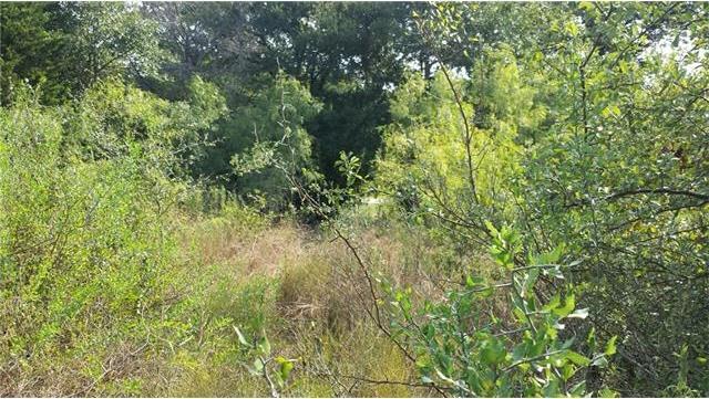252 Arbor Hill Way, Cedar Creek, TX 78612