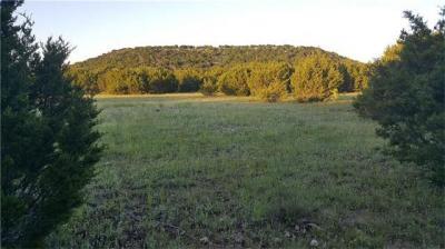 Photo of Tract 10 Highway 281, Adamsville, TX 76550