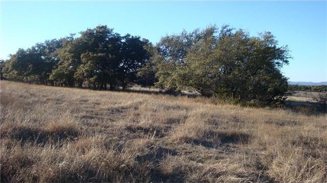 8 Vista Ridge Dr, Round Mountain, TX 78663