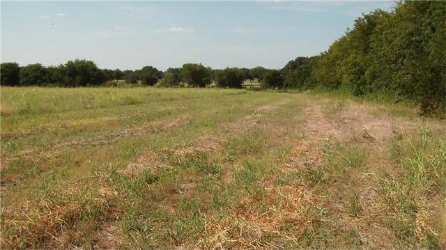 TBD Ward St, Other, TX 76661