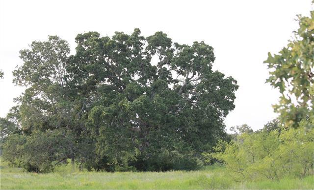 TBD 60 acres Cross Crk, Georgetown, TX 78628
