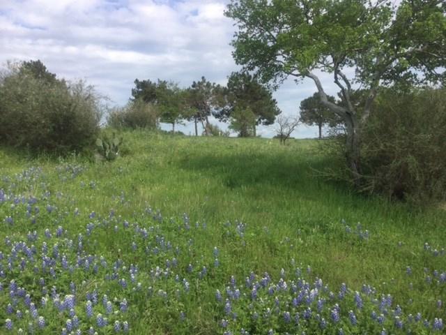 311 Out Crop, Horseshoe Bay, TX 78657