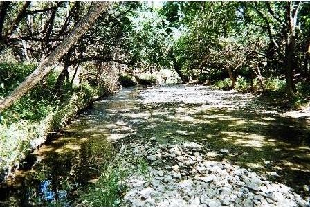 Brushy Creek Rd, Cedar Park, TX 78613