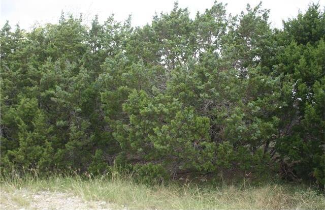 14802 Brown Bluff Cir, Leander, TX 78641