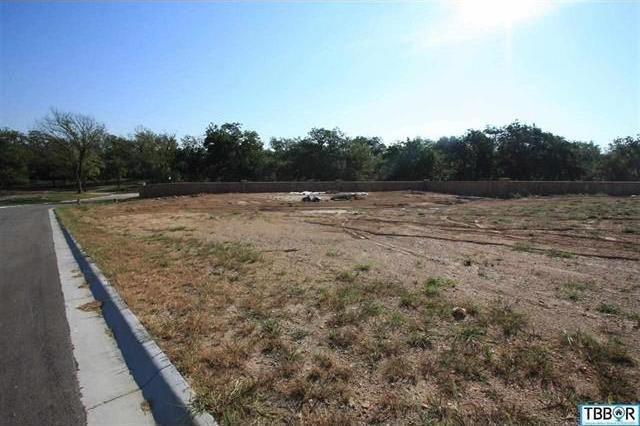 3045 Pecan Meadow Dr, Belton, TX 76513
