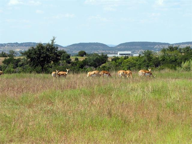 0 (lot 74) Bluff Ridge Trl, Blanco, TX 78606