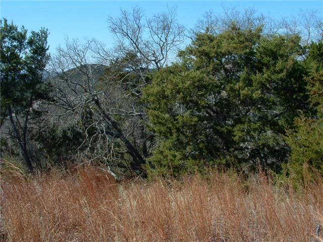 21508 Wild Bear Path, Lago Vista, TX 78645