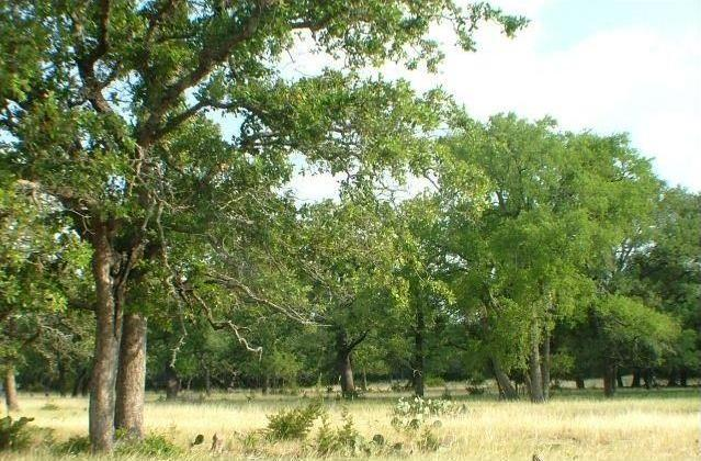 109 County Road 116, Burnet, TX 78611