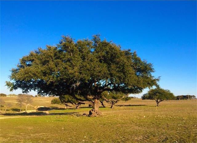 TBD Talbert Ranch, Other, TX 76633