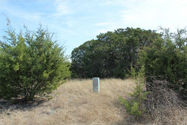 54 Balcones Ridge Way, Bertram, TX 78605