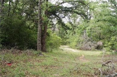 518 Hidden Oaks Dr, Elgin, TX 78621