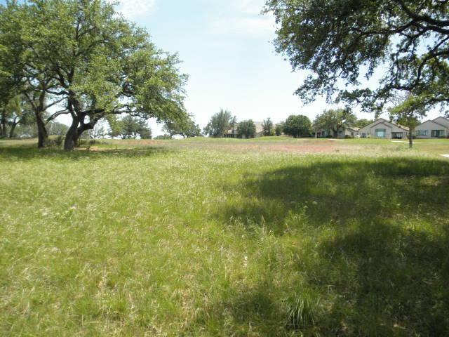 27113 Founders Pl, Spicewood, TX 78669