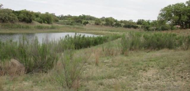 64 Bridle Ridge, Other, TX 78003