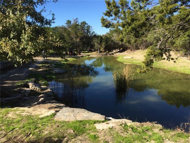 910 Plant Lady Ln, Dripping Springs, TX 78620