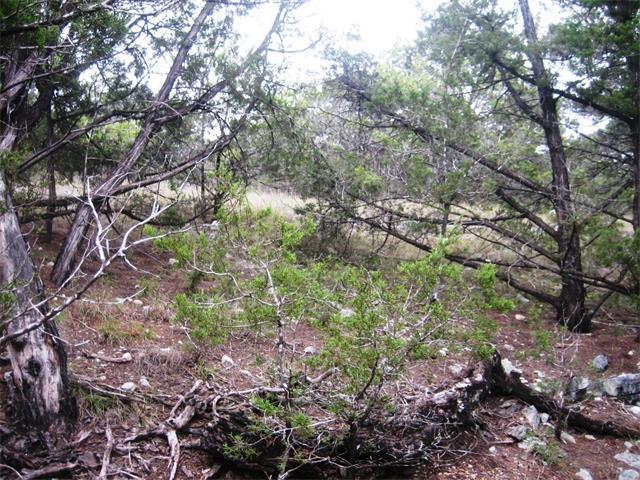 6409 Deer Run, Lago Vista, TX 78645