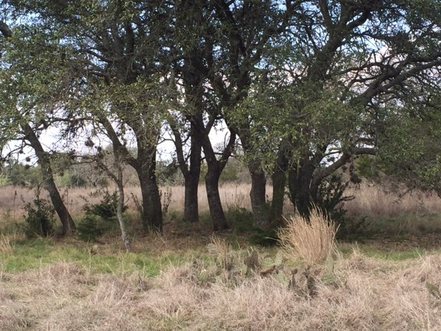 Lot 138, Section 4 Abierto Cove, Blanco, TX 78606