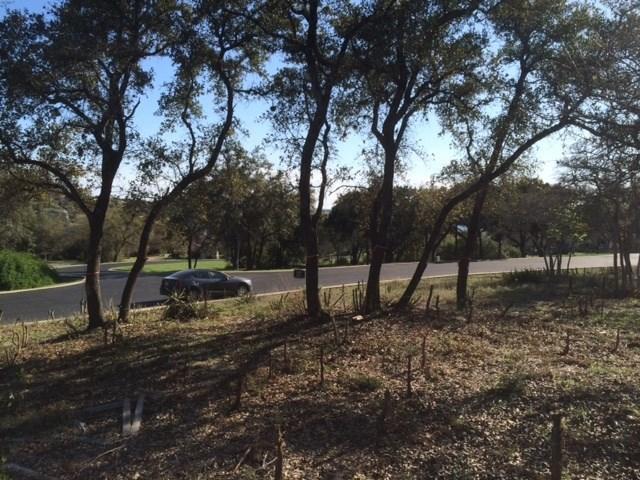 17101 Northlake Hills Dr, Jonestown, TX 78645