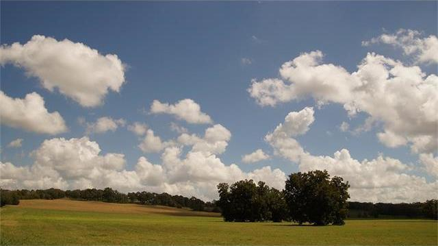 1036 S State Highway 237, Round Top, TX 78954
