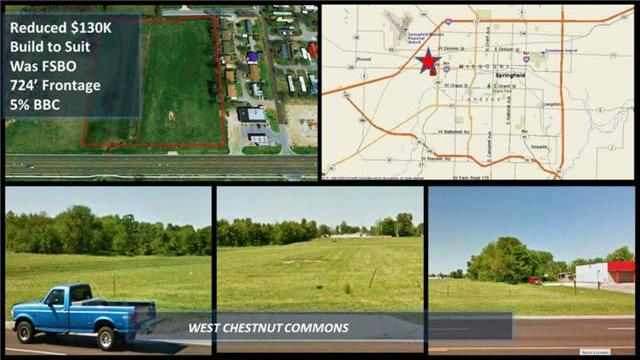 4007 W Chestnut Expy, Other, MO 65802