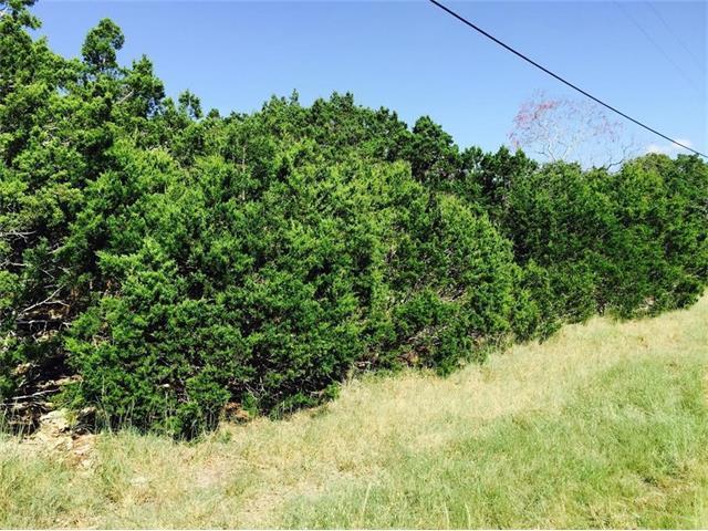 1406 Greenbriar Dr, Canyon Lake, TX 78133