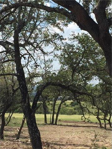 Lot 1 West Fitzhugh, Dripping Springs, TX 78620