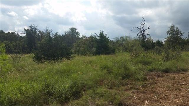 15.3 acres Fm 20, Dale, TX 78616