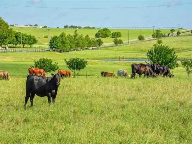 104 Country Vista Lane, Georgetown, TX 78626