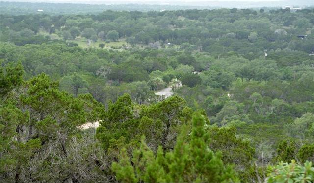 910 Plant Lady Ln, Dripping Springs, TX 78620