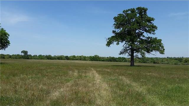 43.681 acres Taylorsville Rd, Dale, TX 78616