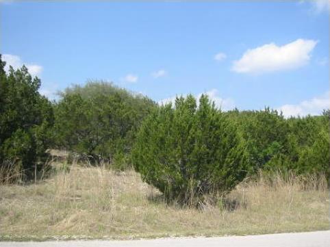 20802 Henry Ave, Lago Vista, TX 78645