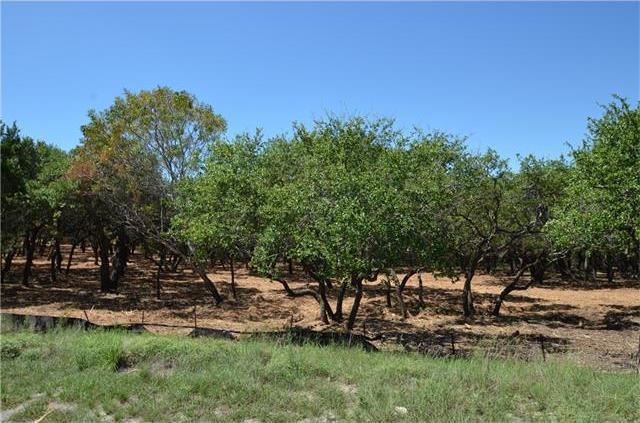 243 Emerald Point Cv, Driftwood, TX 78619