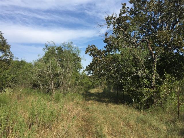 000 Sleepy Meadow, Nixon, TX 78140