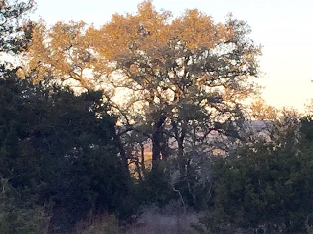 Lot 73 Cielo Springs, Blanco, TX 78606
