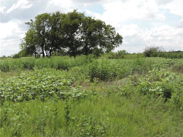 County Road 1660, Hutto, TX 78634