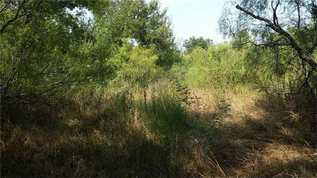 210 Arbor Hill Way, Cedar Creek, TX 78612