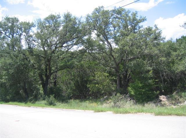 17808 W Reed Parks Rd, Jonestown, TX 78645