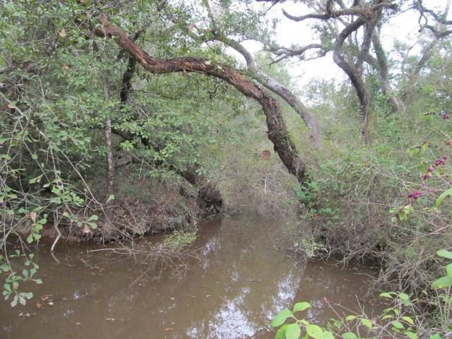 Sandy Creek Rd, Other, TX 77442