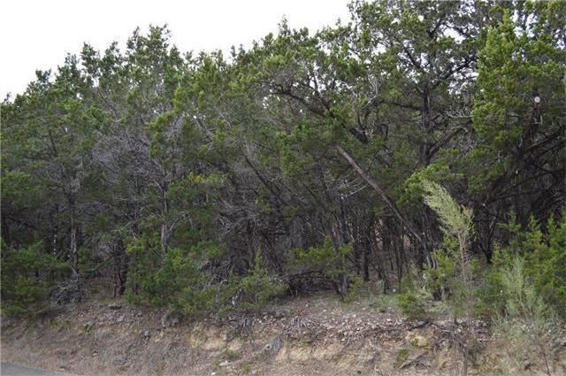 20701 Park Dr, Lago Vista, TX 78645