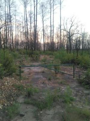 Photo of 151 E Broken Tree Ln, Smithville, TX 78957
