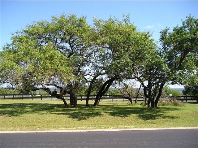 1413 Majestic Hills Blvd, Spicewood, TX 78669