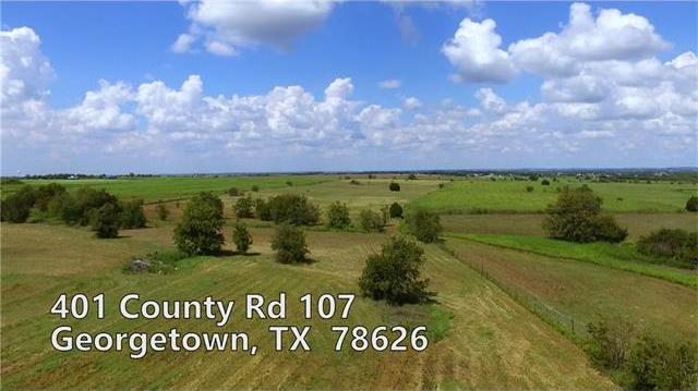 401 County Road 107, Georgetown, TX 78626