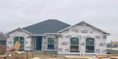 Photo of 200 Elm Green Cv, Hutto, TX 78634