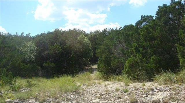 Corner of Rr 165 & Rr 2325, Blanco, TX 78606
