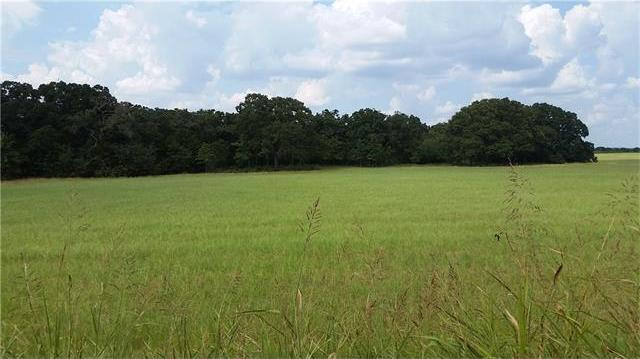 2293 County Road 475, Thrall, TX 76578