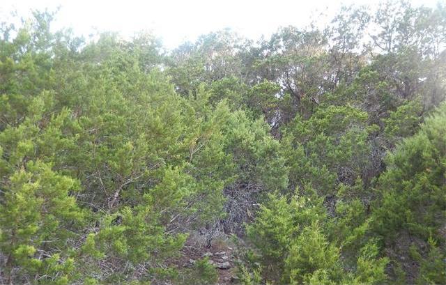 21005 Stone Cliff Dr, Lago Vista, TX 78645