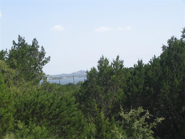 17804 W Reed Parks Rd, Jonestown, TX 78645