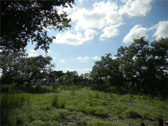 213 Ridge Pt, Spring Branch, TX 78070