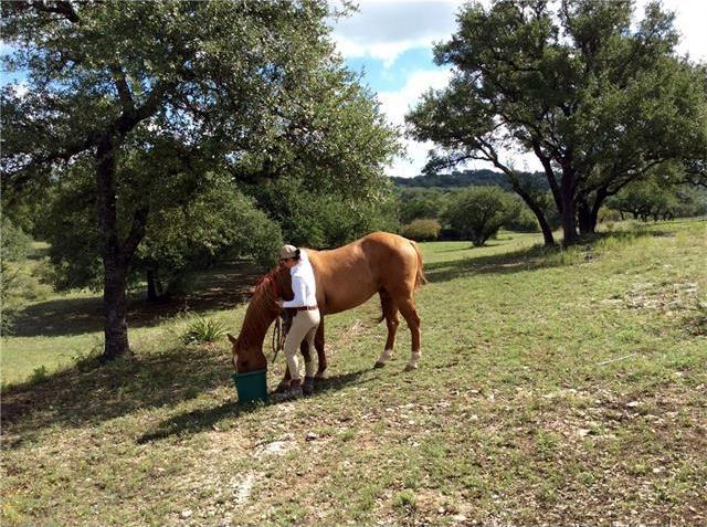 190 Granite Ridge Dr, Spicewood, TX 78669