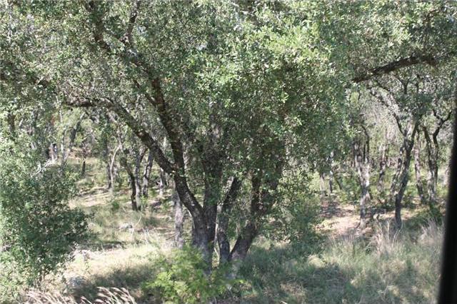 108 Oak Meadow Trl, Spicewood, TX 78669
