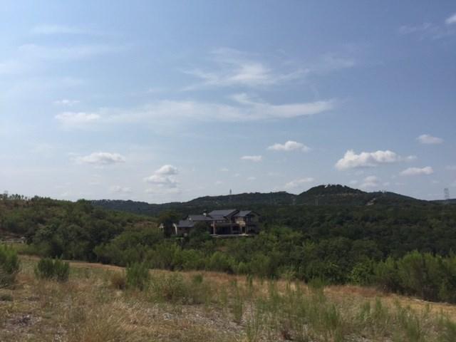321 Bisset Ct, Austin, TX 78738
